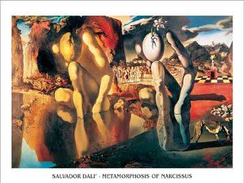 Reprodukce Metamorfóza Narcise, 1937