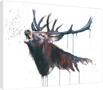 Obraz na plátně Sarah Stokes - Roar
