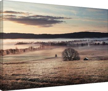 Andreas Stridsberg - Misty Morning På lærred