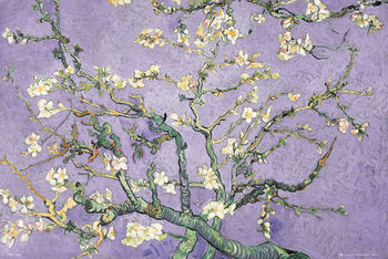 Plagát VINCENT VAN GOGH - purple blossom