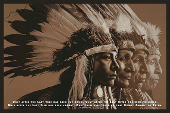 NATIVE WISDOM Plakat