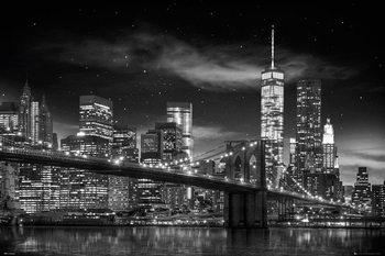 New York - Freedom Tower (Zwart Wit) Plakater