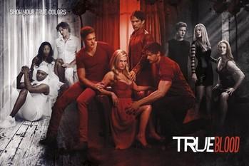 TRUE BLOOD - show your true co Plakát