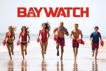 Plakat Baywatch: Słoneczny patrol - Bay Team