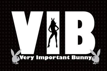 Plakát Playboy - V.I.B.