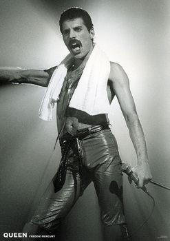 Plakát Queen - Freddy Mercury