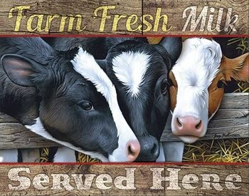 Plechová cedule Farm Fresh Milk