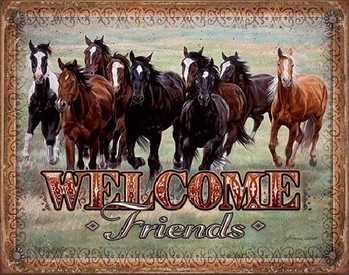 Plechová cedule WELCOME - HORSES - Friends