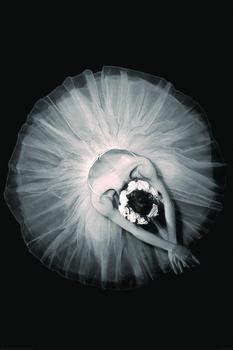Balletdanseres Poster