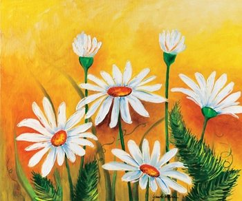 Daisies and Ferns Kunstdruk