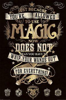 Póster Harry Potter - Magic
