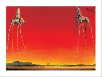 Les Elephants Kunstdruk