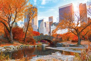 New York - Central Park Autumn Poster
