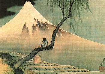 Katsushika Hokusai - mount fuji and fisherboy in a willow tree Poster