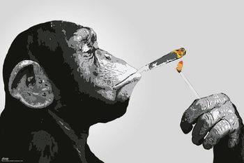 Steez - Monkey Smoking Poster
