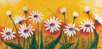Meadow of daisies Kunstdruck