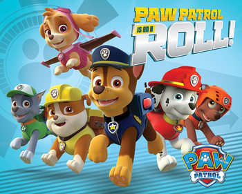 Poster Paw Patrol - On A Roll