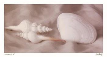 Shell Sonnet lV Kunstdruck