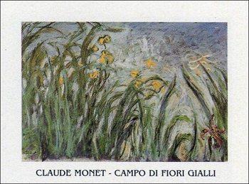 The Yellow Iris - Stampe d'arte