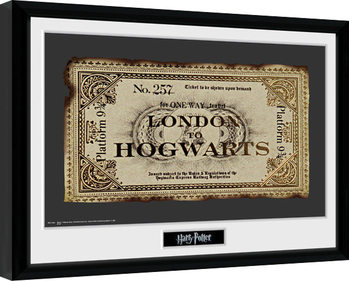 Harry Potter - Ticket Poster encadré