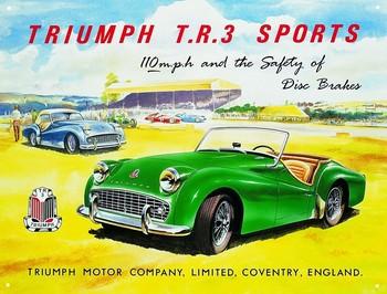 TRIUMPH TR3 Metalen Wandplaat