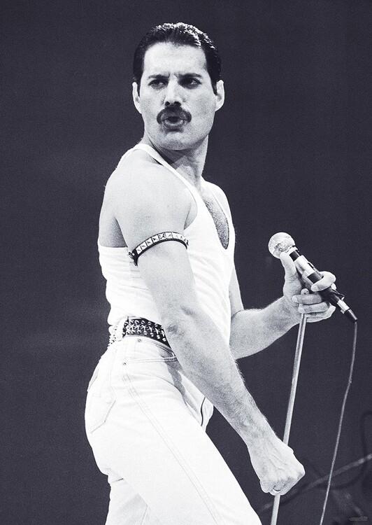 Плакат Freddie Mercury - Live Aid