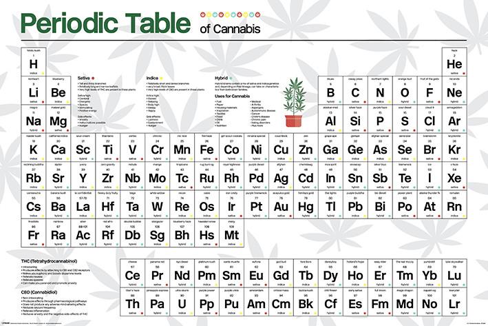 Periodic Table - Cannabis Плакат