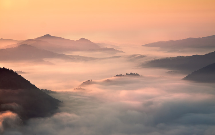 Платно foggy morning in the mountains