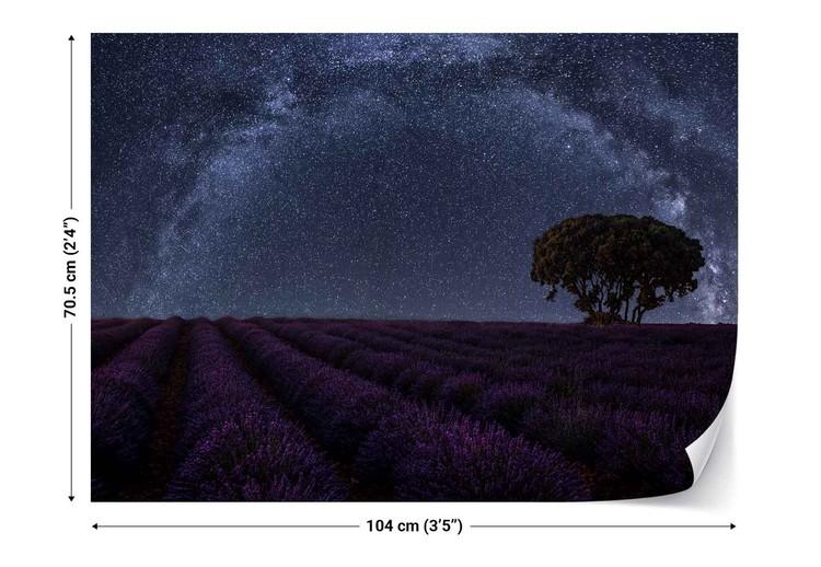 Lavender In Brihuega фототапет