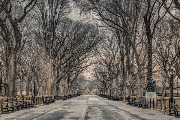 Assaf Frank - New York Central Park плакат