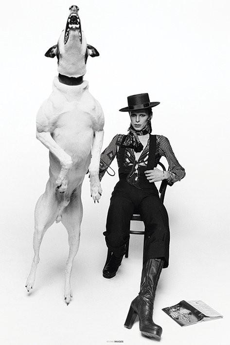 David Bowie - Diamond Dogs плакат
