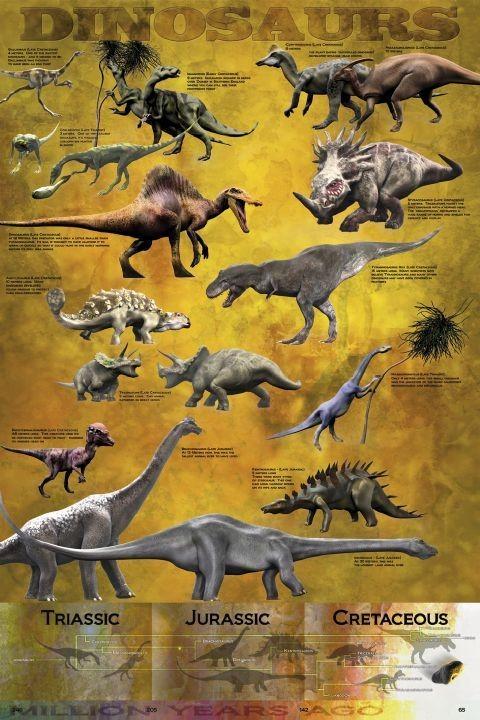 Dinosaurus - chart плакат