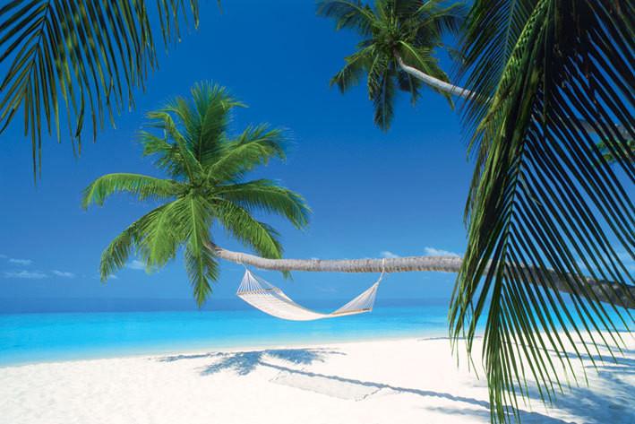 Maledives island - Hammock плакат