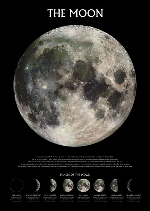 The moon – stage of the moon - плакат