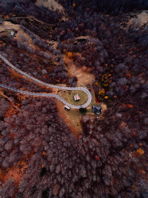 художествена фотография Mountain road between autumn trees