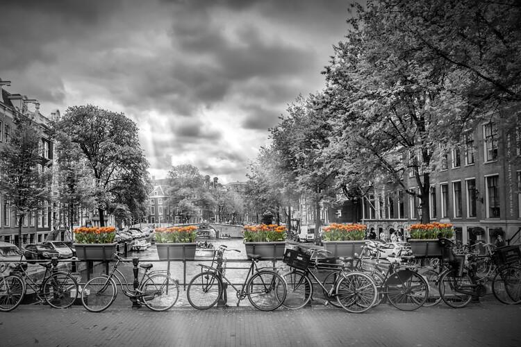 художествена фотография AMSTERDAM Herengracht