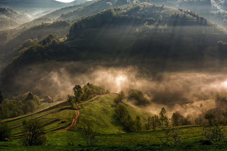 художествена фотография Morning fog