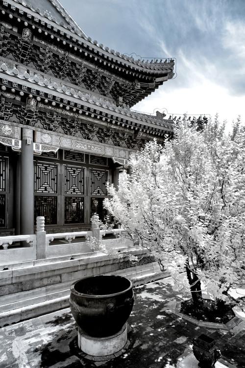 художествена фотография White Summer Palace