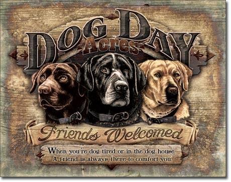 Plechová cedule DOG DAY ACRES FRIENDS WELCOMED, (41 x 30 cm)
