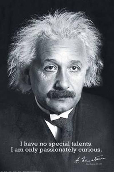 Plakát, Obraz - Albert Einstein - i have no special, (61 x 91,5 cm)