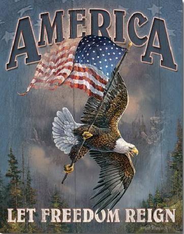 Plechová cedule AMERICA - let freedom reign, (32 x 41 cm)