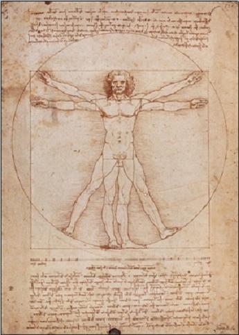 Obraz, Reprodukce - Leonardo Da Vinci - Vitruvius - Proporce lidské postavy, (60 x 80 cm)