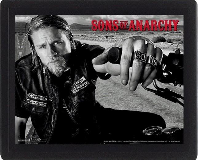 3D Plakát, Obraz s rámem Sons of Anarchy (Zákon gangu) - Jackson, (25 x 20 cm)