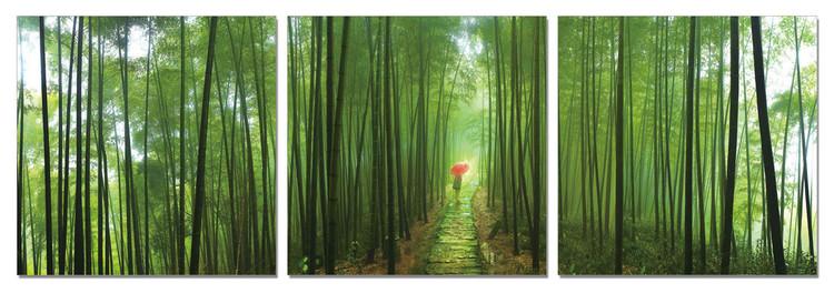 Obraz Bambusový les, (150 x 50 cm)