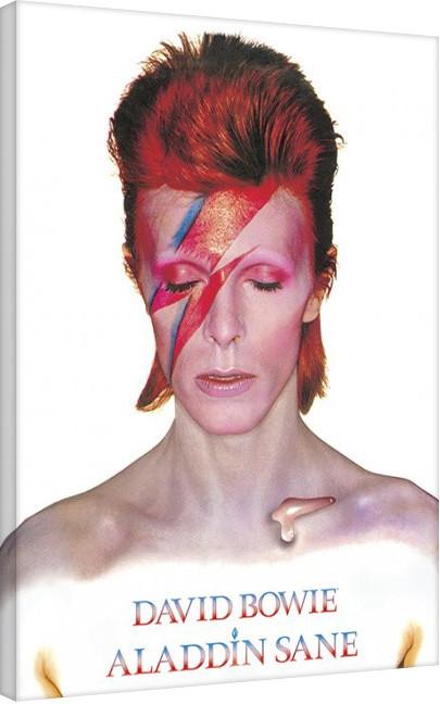 Obraz na plátně David Bowie - Aladdin Sane, (60 x 80 cm)