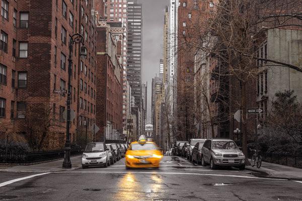 Plakát, Obraz - Assaf Frank - New York Taxi, (91,5 x 61 cm)