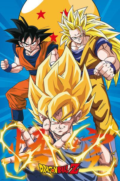 Plakát, Obraz - Dragon Ball - Z3 Gokus Evo, (61 x 91,5 cm)