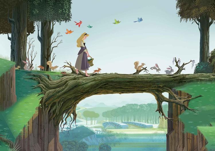 Fototapeta, Tapeta Disney Princezna Šípková Růženka, (368 x 254 cm) 368x254 cm - 115g/m2 Paper