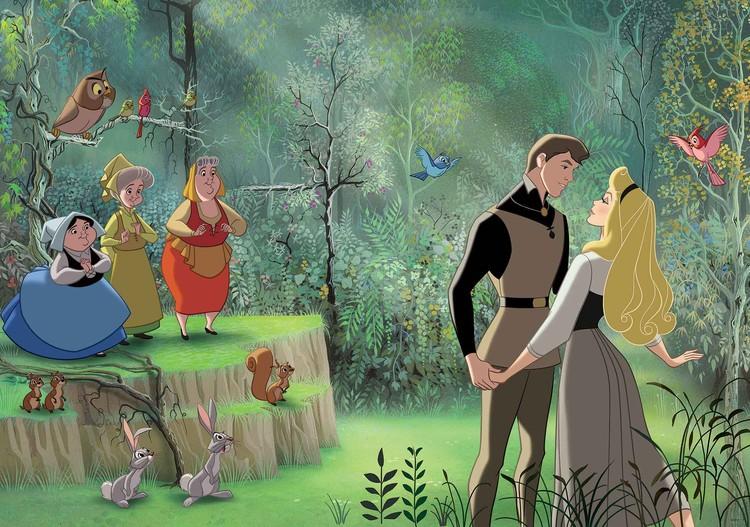 Fototapeta Disney Princezna Šípková Růženka, (368 x 254 cm) 368x254 cm - 115g/m2 Paper