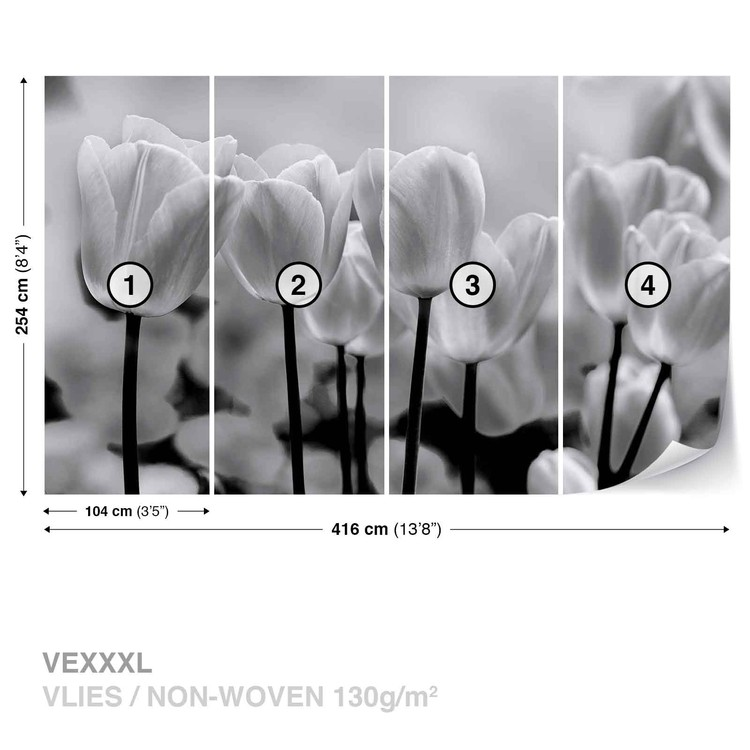 fototapete tapete tulpen blumen schwarz wei bei europosters. Black Bedroom Furniture Sets. Home Design Ideas